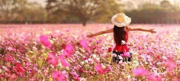 article parfum champ de fleurs femme