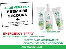 aloe vera box premier secours