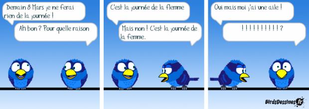 article-etre-une-femme-oiseaux-bd