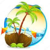 Article concours 400 abonnés palmiers