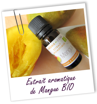 Article sérum capillaire EA Mangue
