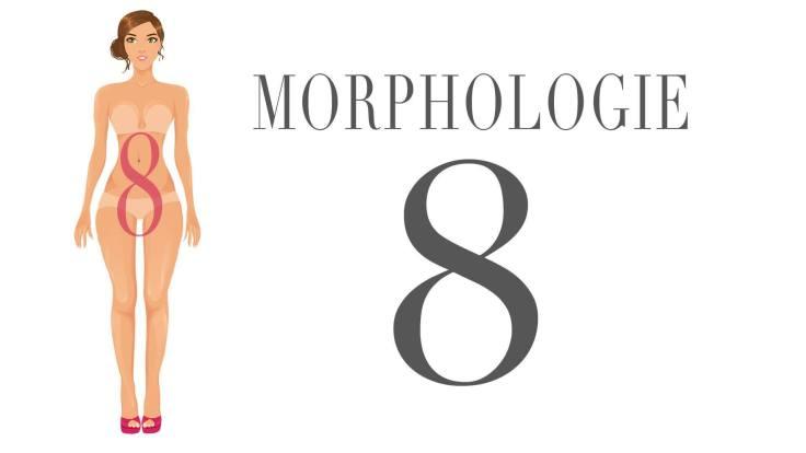 AMB-Morphologie-en-8
