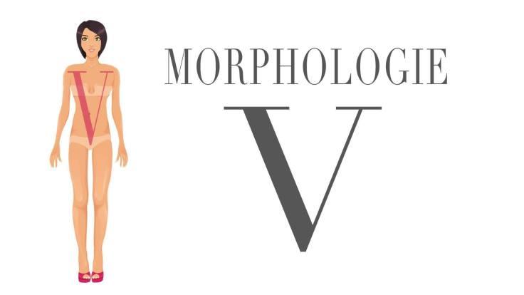 AMB-Morphologie-en-V