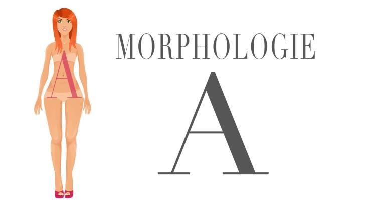 morphologie-a